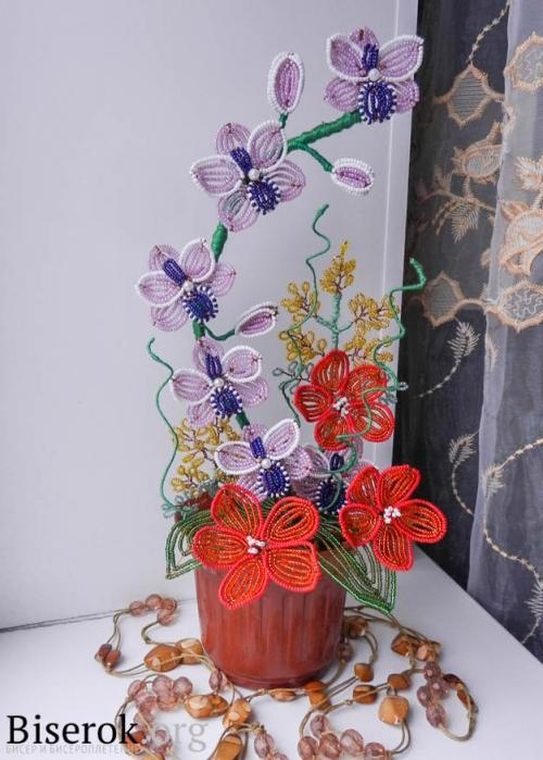 букет орхидеи и мимозы