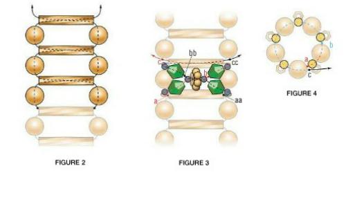 Схема плетения бусины