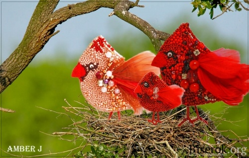 птичка брошка
